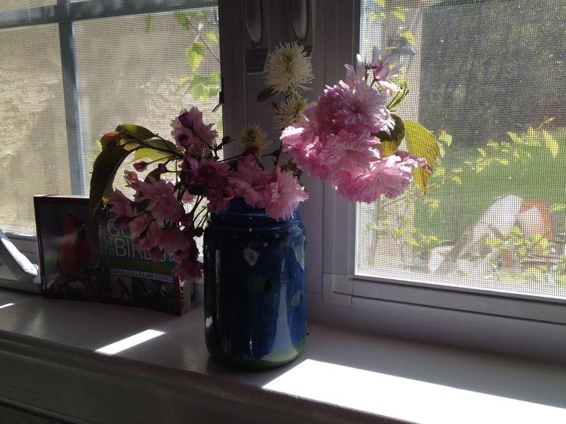 Blooms in Annabella's Jar